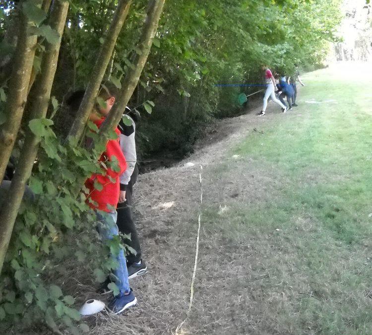 Les élèves de 5ème étudient une rivière